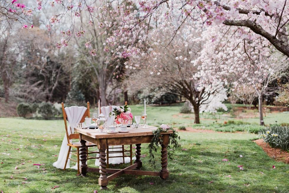 Cherry Blossom Wedding Event